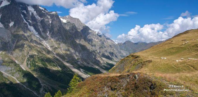 Near Col Sapin (Italy)